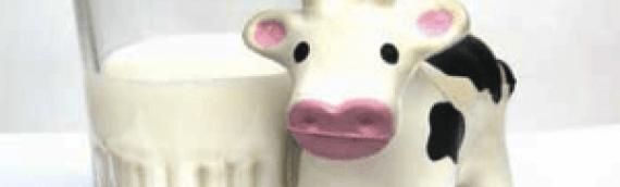 La intolerancia a la leche no es tanto por la lactosa como por la proteína caseína